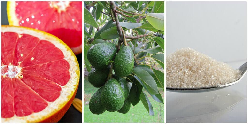 grapefruit avocado oil face scrub