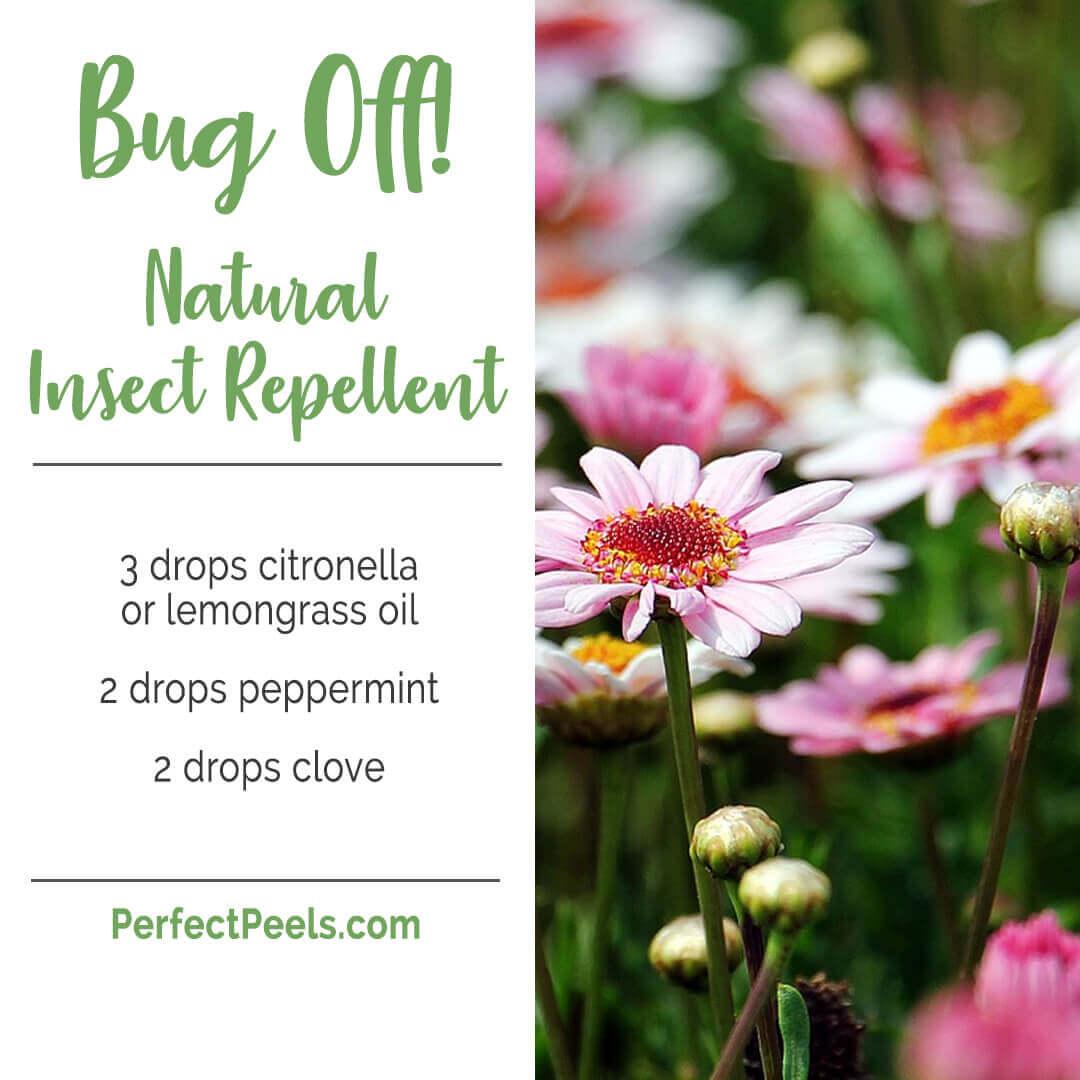 diffuser blends using lemongrass essential oil
